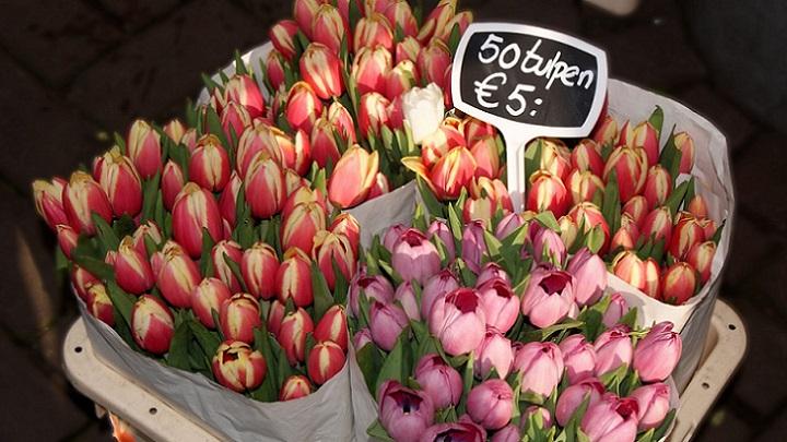 tiendas-de-flores