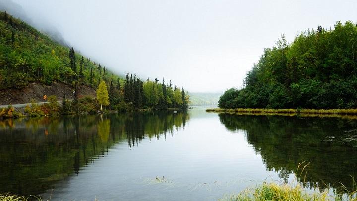 paisaje-verde