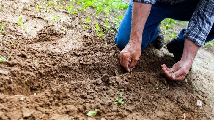 emprender-en-agricultura